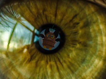 La Chufa e i suoi benefici per gli occhi e la vista…e non solo!