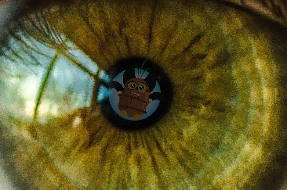 La chufa e i benefici per la vista e gli occhi
